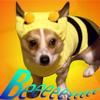 Bunbee